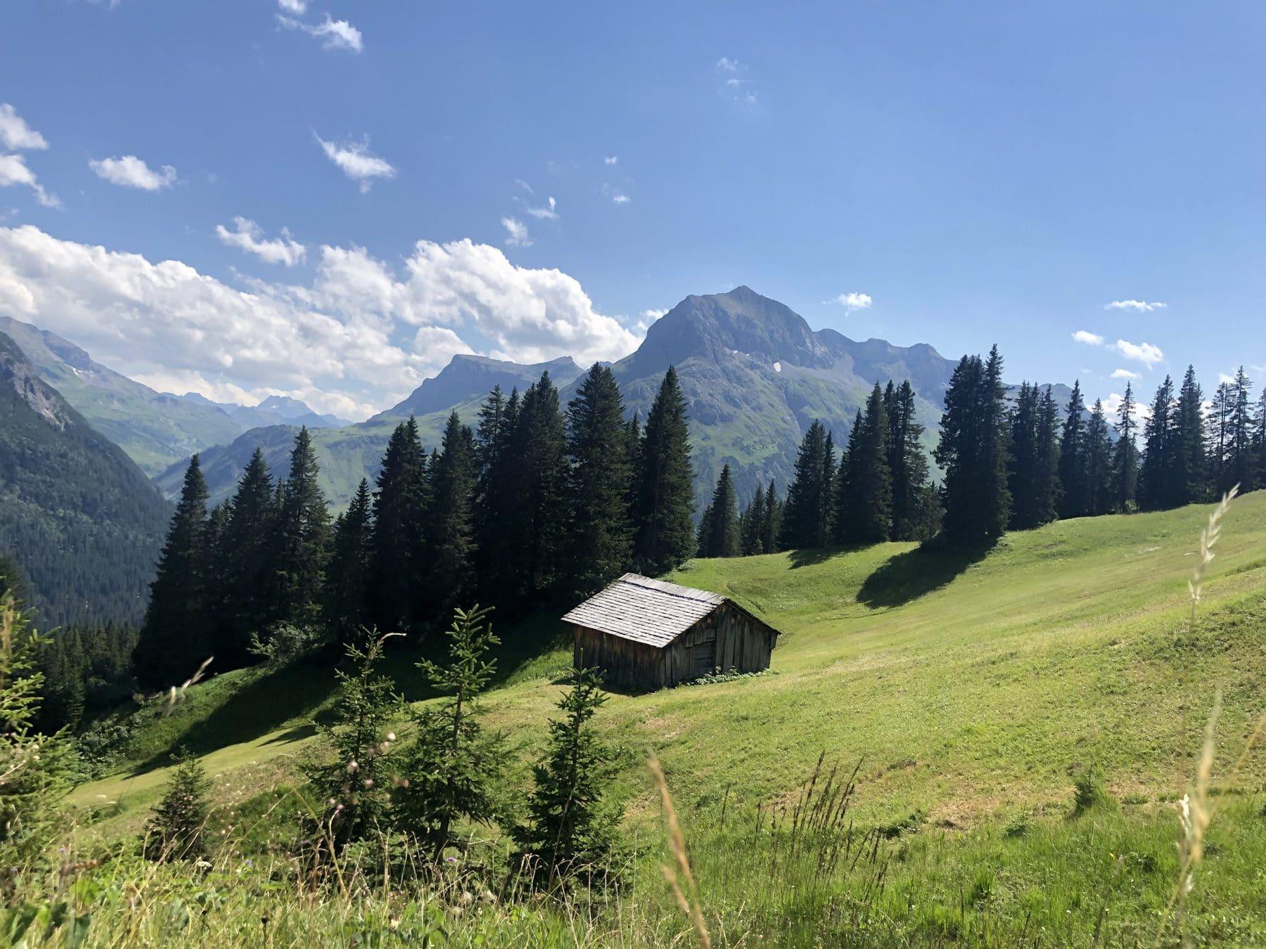 Wunderschöne Lech Webcam Ausblicke im Sommer